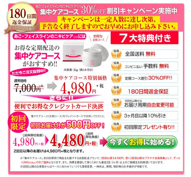 メルライン-最安値販売店2メルライン-最安値販売店-定期コース1