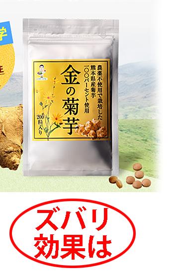 金の菊芋 最安値3