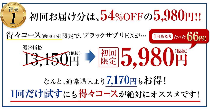 ブラックサプリEX 男性用 最安値2