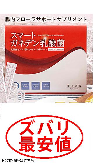 スマートガネデン乳酸菌 最安値1
