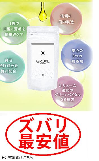 グロキシルサプリメント 最安値位1