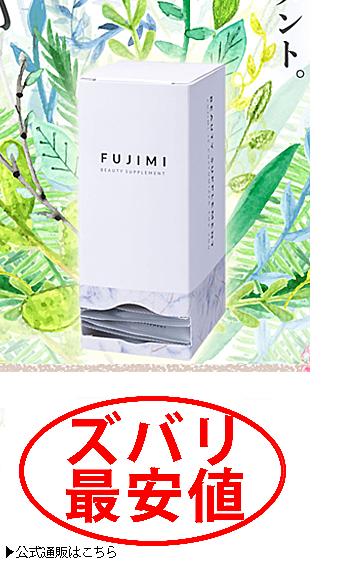 fujimi-最安値